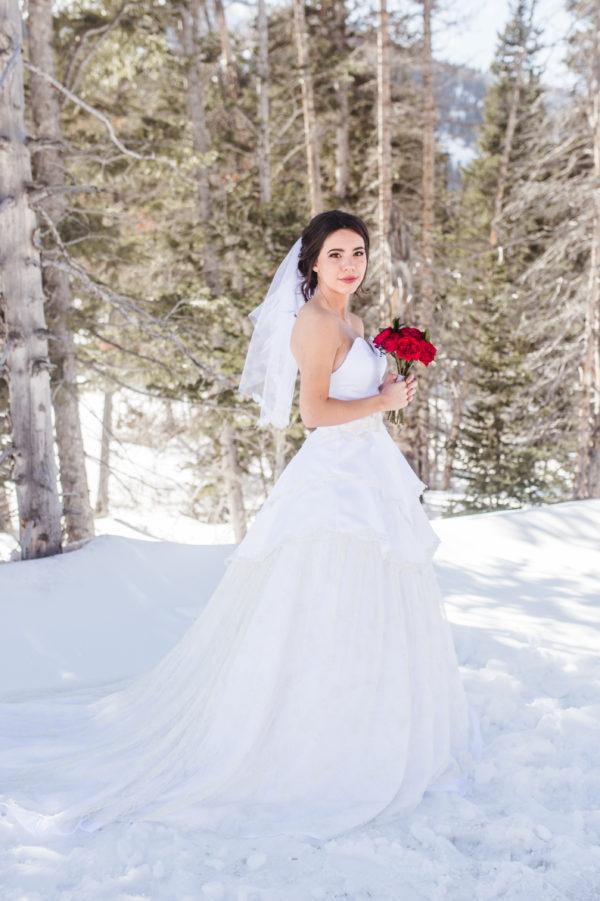 Vintage Veils - Eliza - Rachel Elizabeth Desinger Bridal Gowns