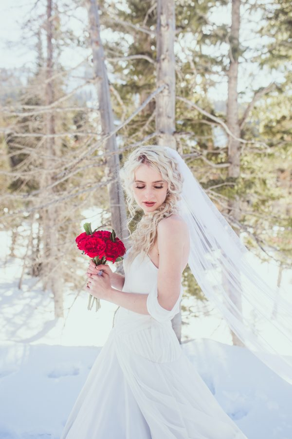 Princess Wedding Gown - Alayna - Rachel Elizabeth Deisnger Bridal Gowns