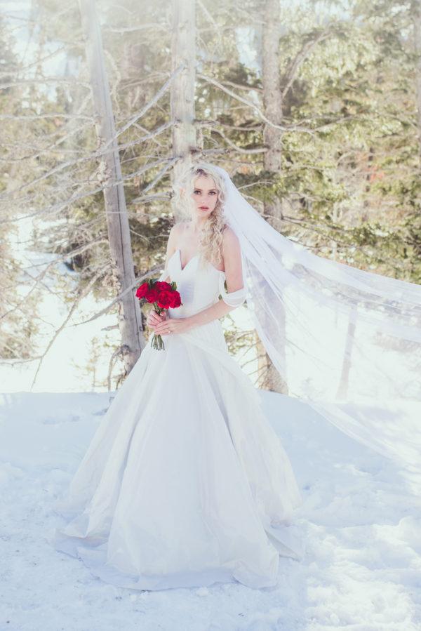 Princess Wedding Gown - Alayna - Rachel Elizabeth Desinger Bridal Gowns