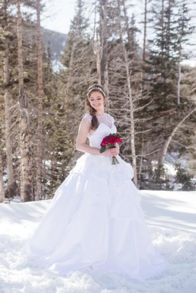 Teired Ballgown - Gabriella - Rachel Elizabeth Deisnger Bridal Gowns